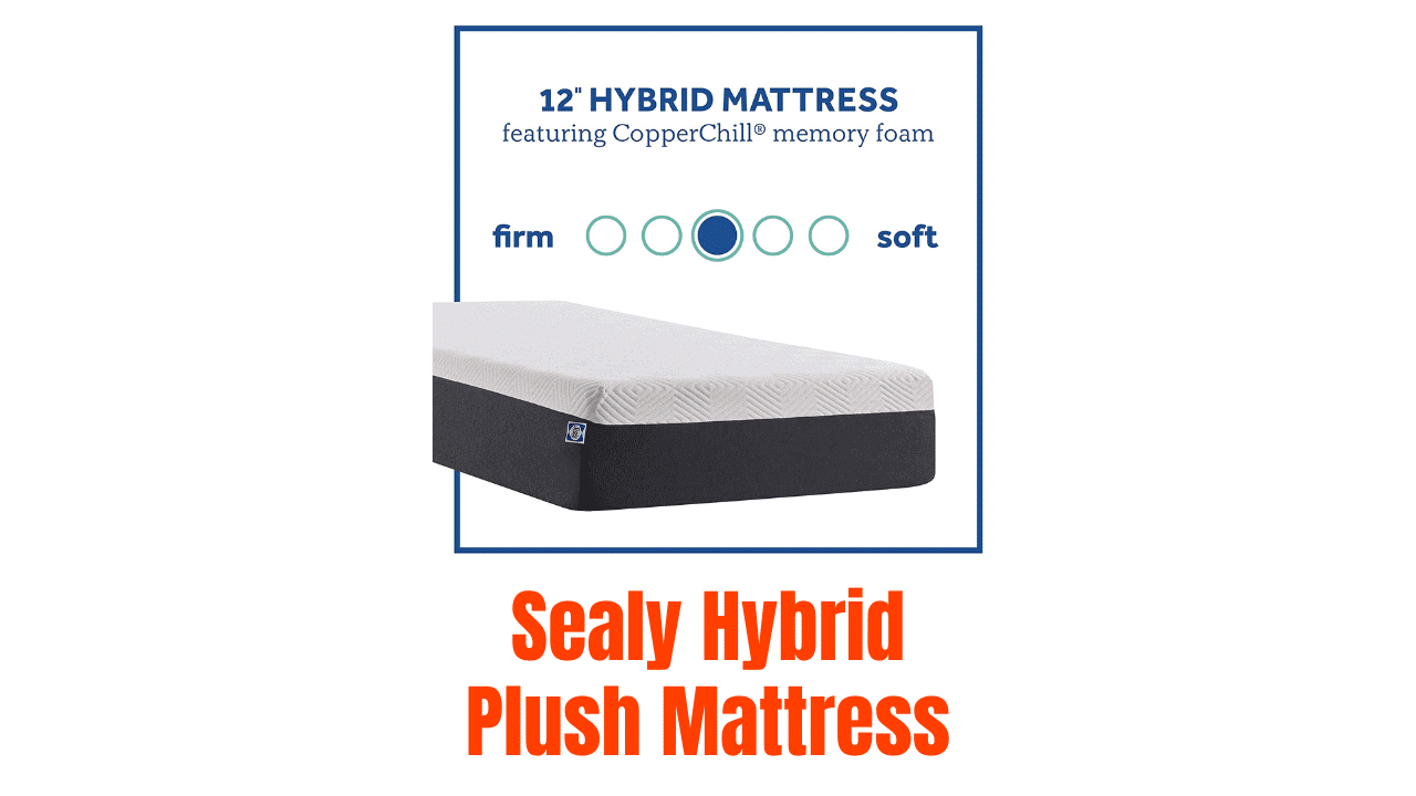 Sealy Hybrid Plush Mattress Reviews